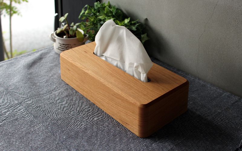 Tissue Case